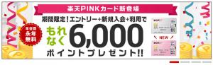 rakuten6000